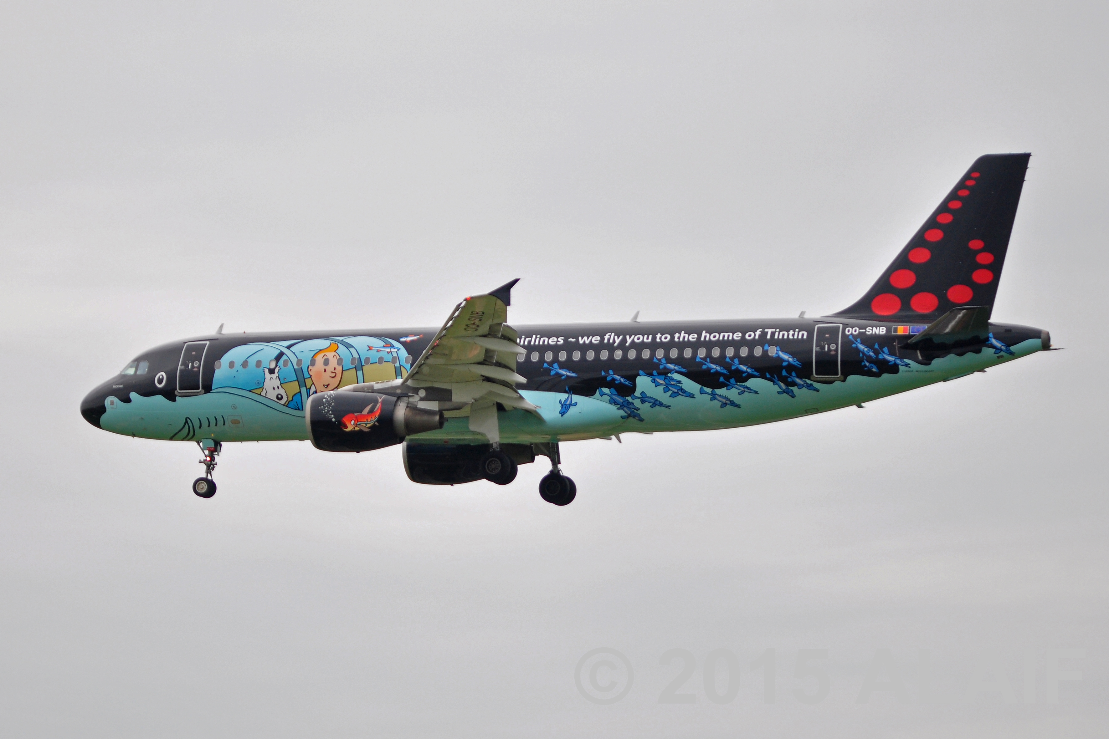 "Brussels Airlines ""Rakham"""
